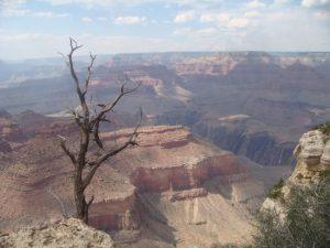 Eröffnet in Kürze wieder. Grand Canyon Nationalpark in den USA.